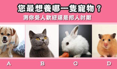 最想要,寵物,受人歡迎,招人討厭,心理測驗,星座寶寶